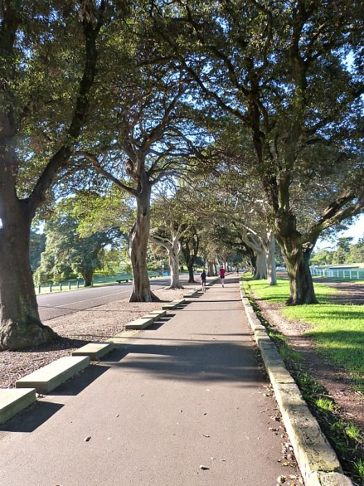 Centennial Park  Sydney's best walks via The World on my Necklace