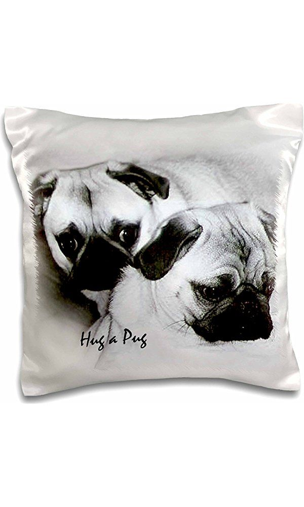 """3dRose Hug a Pug Puppies-Pillow Case, 16 by 16"""" (pc_1232_1) Best Price"""