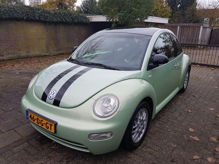 New Beetle Marjan