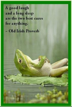 Old Irish Proverb 61
