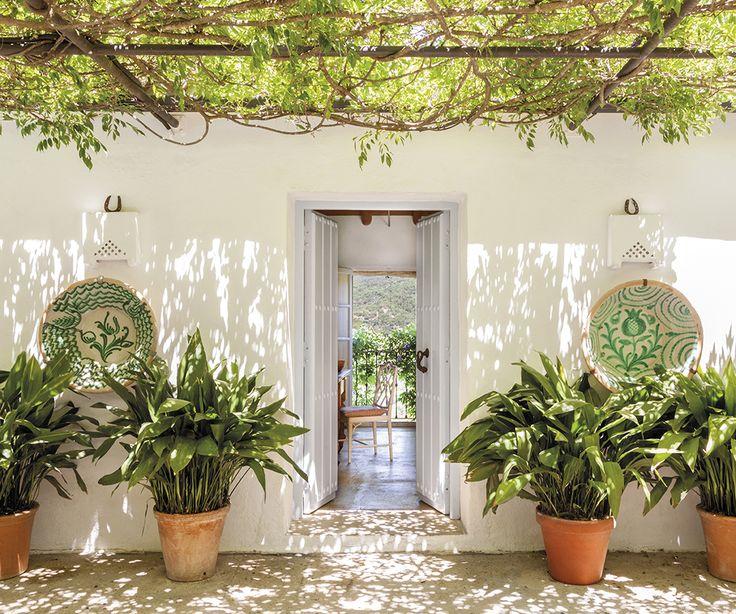 Entrada de la casa bajo el porche con pérgola y rodeado de plantas_00437066