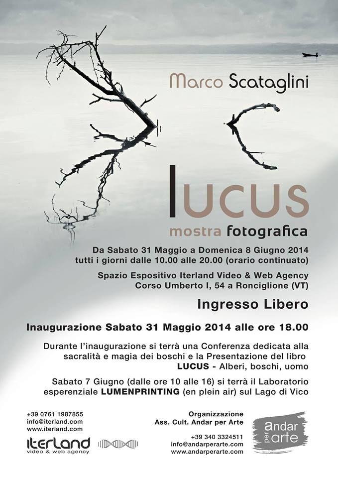La mia mostra a Ronciglione, dal 31 maggio all'8 giugno 2014!