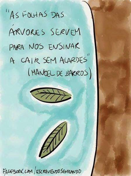"""""""As folhas das árvores servem para nos ensinar a cair sem alardes"""" Manoel de Barros"""