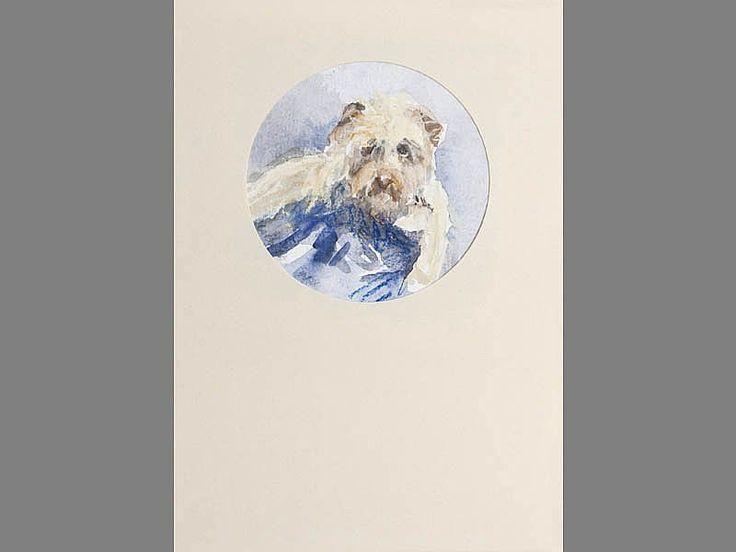 Portret van je huisdier; honden