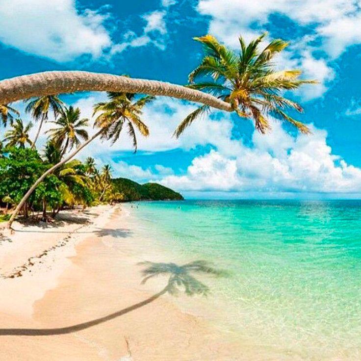 Visitar la isla de Providencia es todo un privilegio, playas blancas, aguas cristalinas y una naturaleza que nos transporta al Caribe de antaño, mira nuestro plan: http://goo.gl/GXrXi0 ¡Encantador! #LugaresSorprendentesSwissandina Imagen vía https://goo.gl/256PkF
