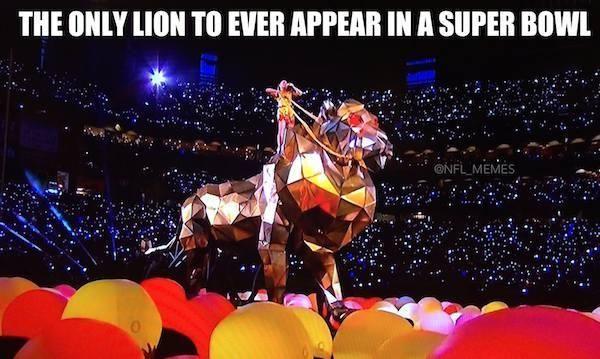 Super Bowl XLIX Memes Super Bowl Detroit Lions http://www.futebolamericano.eu/nfl/os-memes-do-super-bowl-xlix