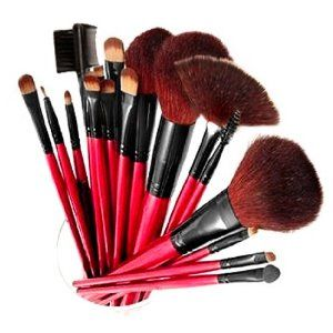 I am so glad i bought this brush set its so nice, i like that they are long so you dont have to do much and they are so soft when they touch your face great produt again and the price amazing really thanks so much. $30: Professional 13 Piece, 12 Brushes, 13 Piece Cosmetic, Brush Set, Makeup, Cosmetics, Shany Professional