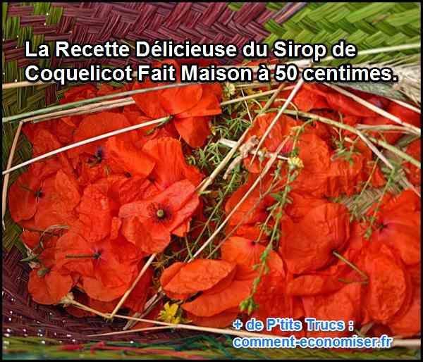 Un sirop de coquelicot, ça vous dit d'essayer ? Vous allez voir, la recette est toute simple.  Découvrez l'astuce ici : http://www.comment-economiser.fr/sirop-coquelicot.html?utm_content=buffer7af3d&utm_medium=social&utm_source=pinterest.com&utm_campaign=buffer