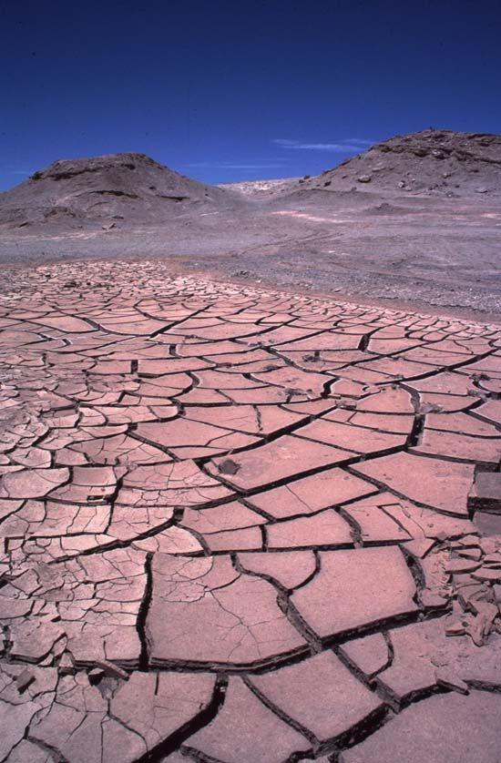 Desierto de Atacama  El Desierto crece  de Nietzsche a J. L. Nancy  Dr. Adolfo Vasquez Rocca  Senador Carlos Cantero
