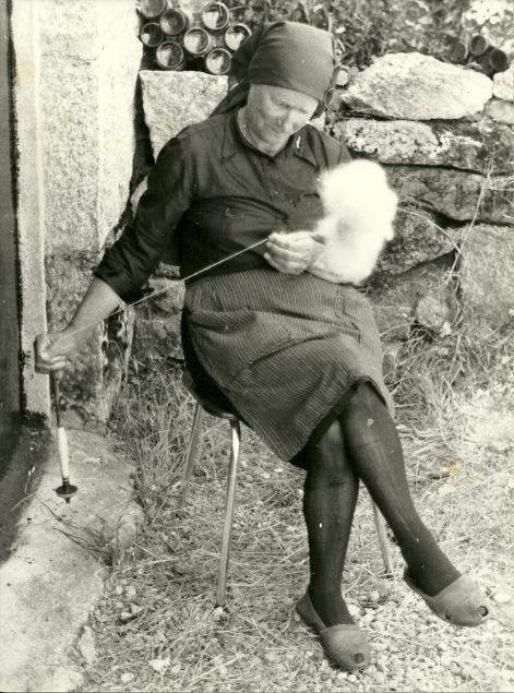 Tia Maria. Galiza