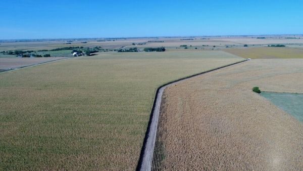 11/21/17 Johnson Heirs 184.37 Acres Clay County, Nebraska LAND AUCTION! 10AM Ruhter Auction & Realty, Inc 402-463-8565 ruhterauction.com