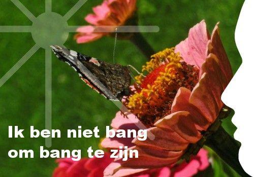 """""""Ik ben niet bang om bang te zijn."""" Ook je eigen persoonlijke dagelijkse inspiratiekaart ontvangen? http://www.confront.nl/inspiratiekaarten/"""