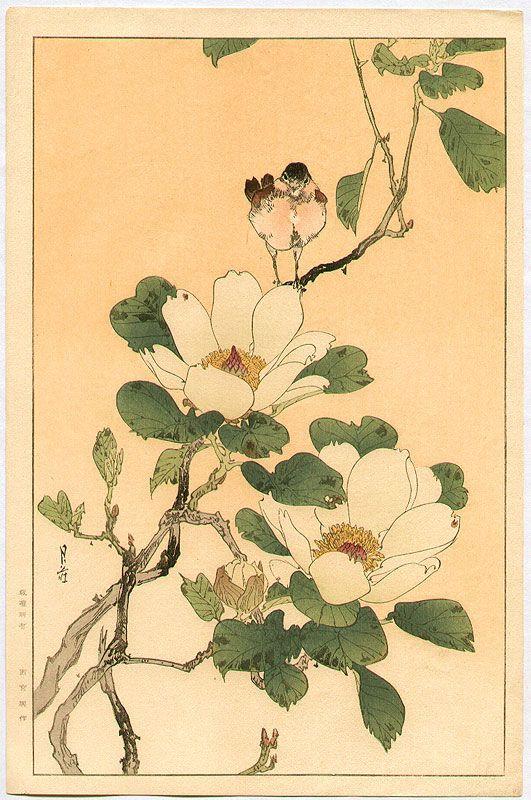 YOSHIMOTO Gesso(吉本月荘 Japanese, 1881-1936) Bird and Magnolia woodblock print via