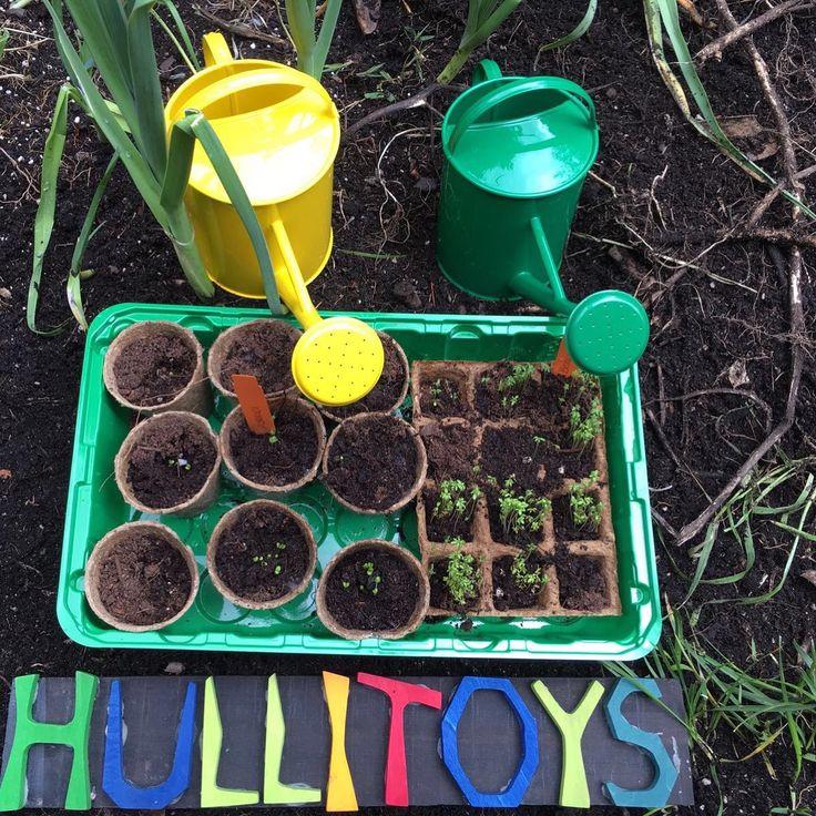 Nuestro pequeño huerto urbano . www.hullitoys.com