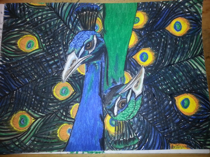 Peacocks.  First time using oil pastels.  21stAug2012