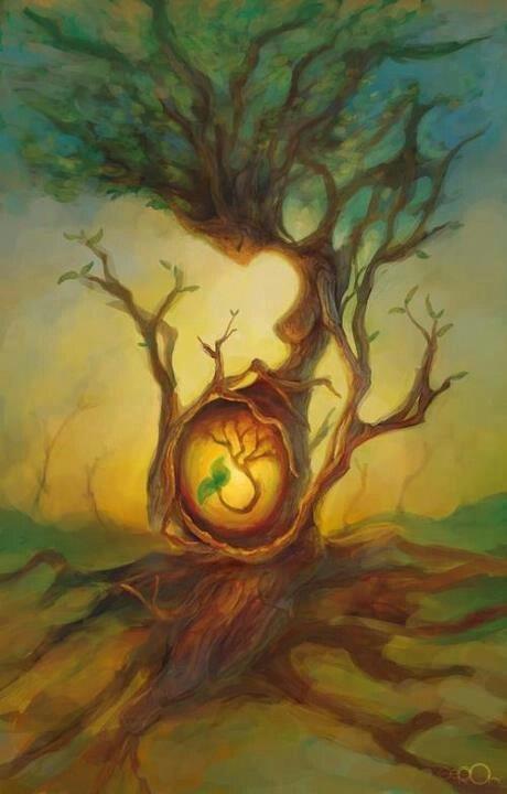 Druids Trees:  #Earth #Mother.                                                                                                                                                     Más
