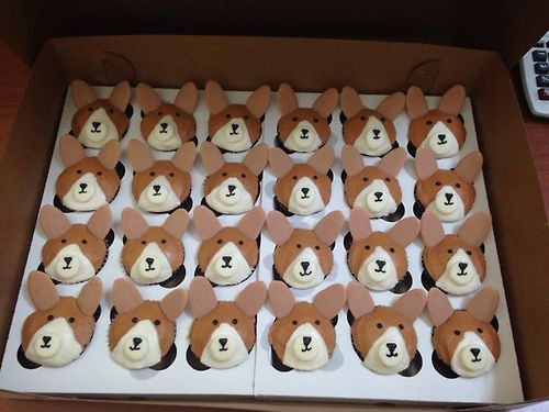 Corgi Cupcakes SOMEONE NEEDS TO MAKE THESE FOR ME - my birthday is coming up :)