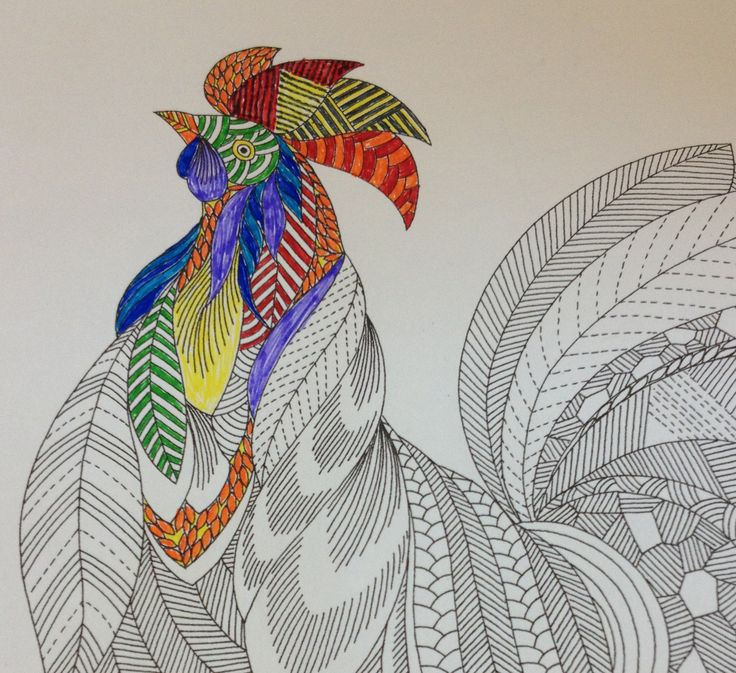 Rooster Millie Marotta Animals Roosters