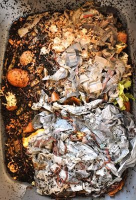A homemade worm farm is an inexpensive way to reduce kitchen waste and create a rich compost.Click To Enlarge
