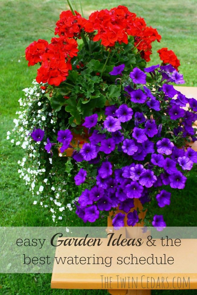 easy garden ideas watering schedule