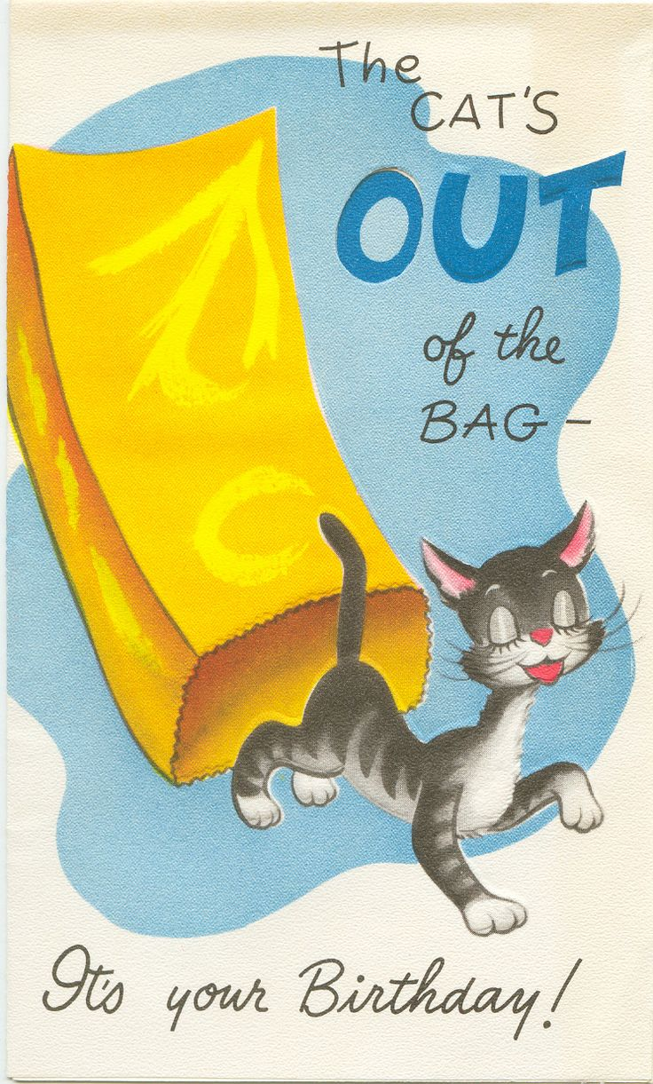The Cat's Out of the Bag - Vintage Birthday Card