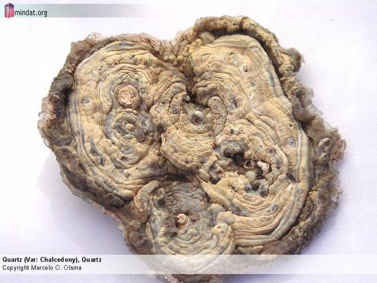 Quartz (Var: Chalcedony), Quartz Thin, disc-shaped concretion of chalcedony (Reverse). 6 x 6 cm.  Copyright Marcelo O. Olsina