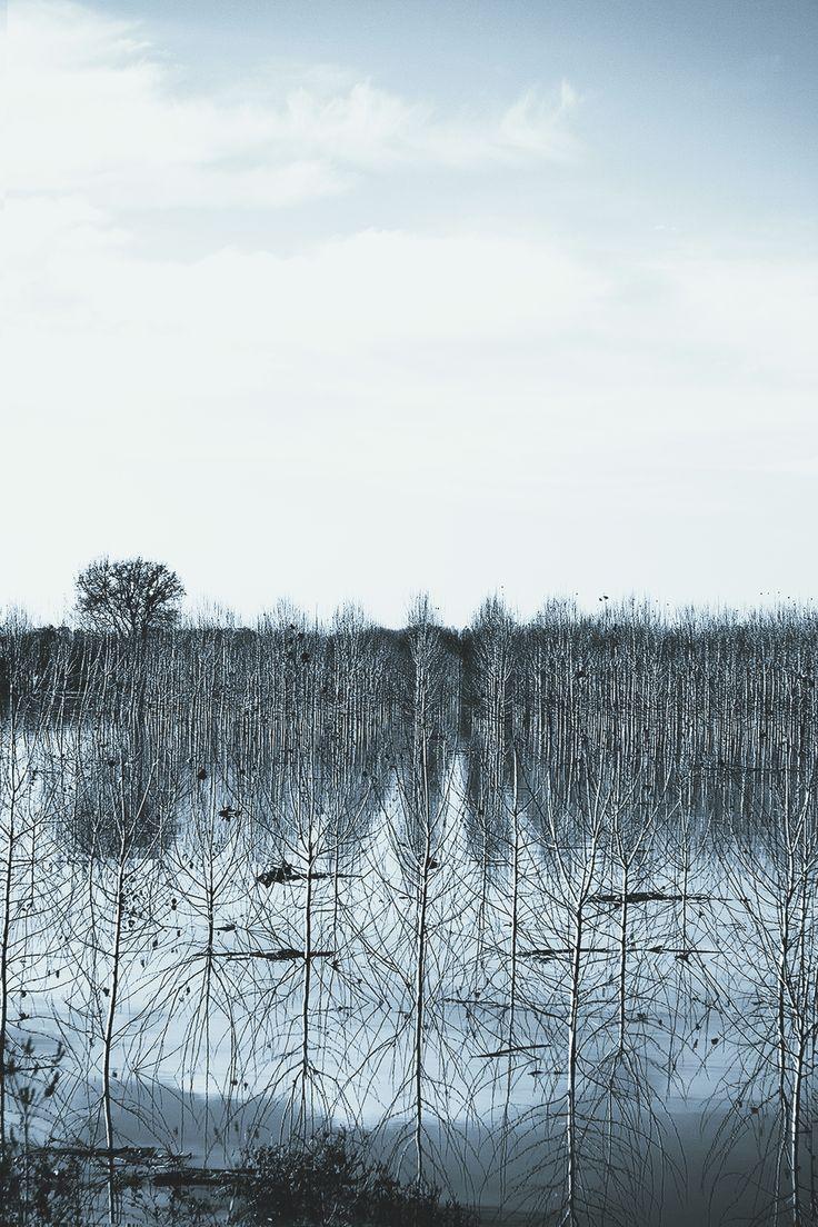 Isolation   © Francesco Butturi Photography