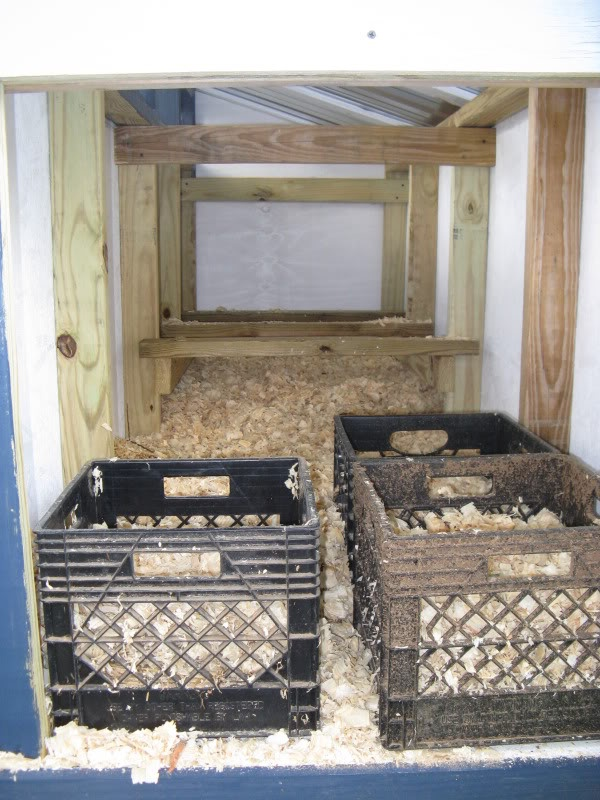 Milk crates for nest boxes what pinterest milk for Wooden chicken crate plans