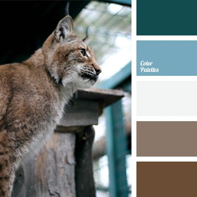 Color Palette #642