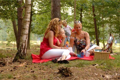 Bospark 't Wolfsven  Bospark 't Wolfsven grenst aan de Strabrechtse Heide een schitterend natuurgebied van ruim 1500 ha. De vakantiewoningen op dit park zijn allemaal vrijstaand en omgeven door natuur. Op het park zijn veel voorzieningen zoals een overdekt zwembad en een groot natuurbad met strandje. Liefhebbers van tennis vissen of (water)fietsen kunnen eveneens prima terecht op dit gezellige familiepark. Ook kunnen jong en oud gratis deelnemen aan Sport & Animatie activiteiten. Een dagje…