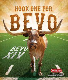 I Love The Texas Longhorns!!!! on Pinterest | Texas Longhorns ...