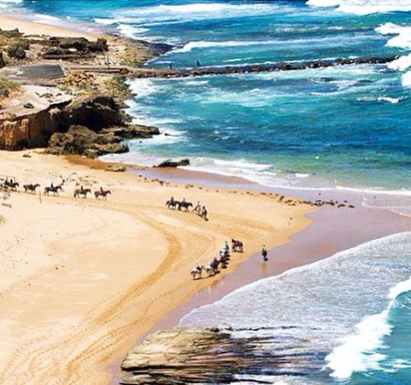 Gunnamatta Trail Rides on Gunnamatta Beach. Mornington Peninsula, Victoria, Australia. Photo: GunnamattaTrailRides