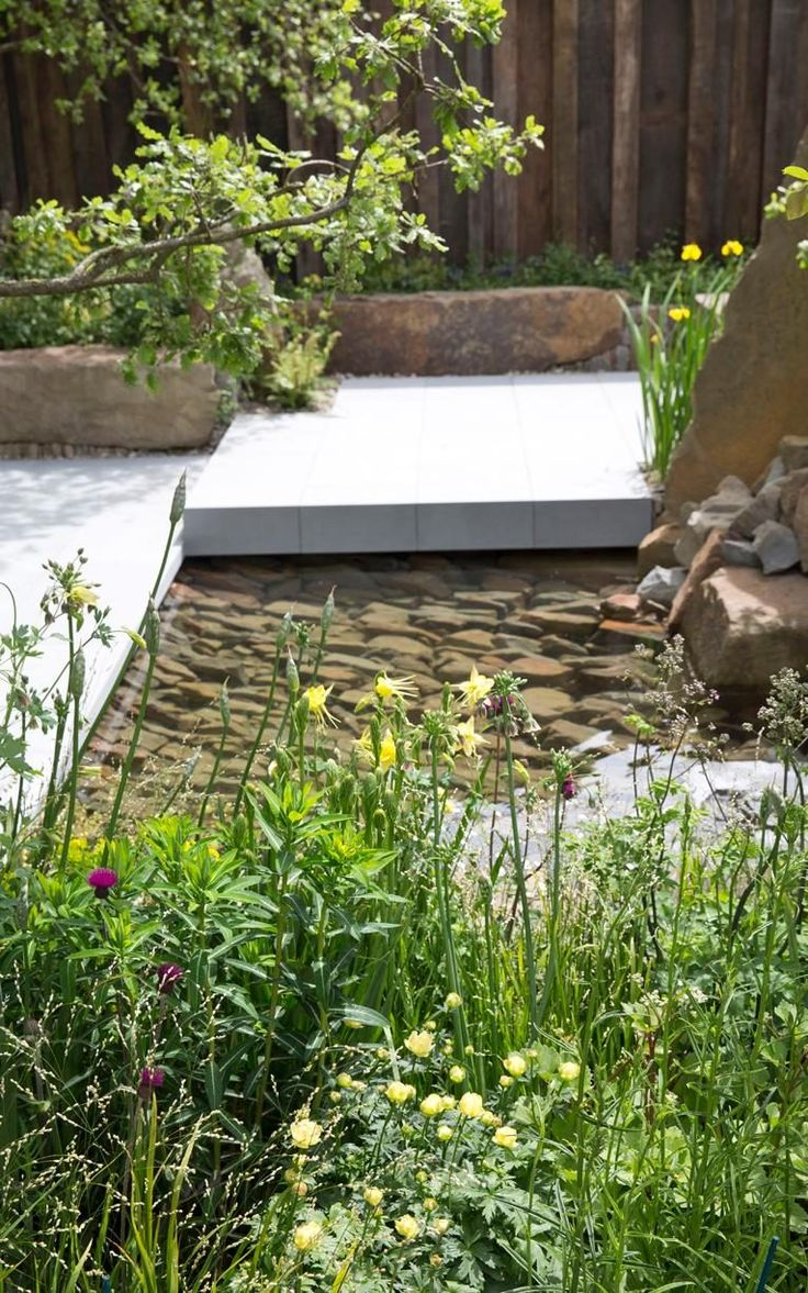 The M&G Garden by Cleve West. Chelsea Flower Show 2016