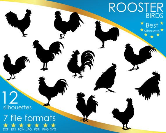 Hey, I found this really awesome Etsy listing at https://www.etsy.com/listing/514618249/12-silhouettes-rooster-chicken-bird