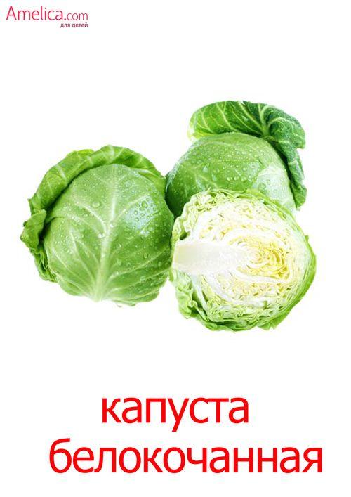 овощи картинки для детей, карточки домана скачать | Овощи ...