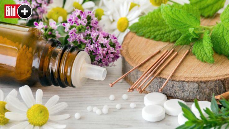 Die große BILD-Schmerzserie   - Gewürznelken helfen gegen Zahnschmerzen *** BILDplus Inhalt ***  -  Gesundheit -  Bild.de
