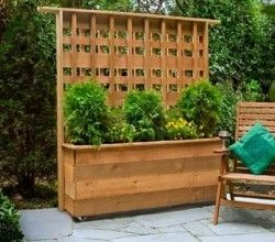 Block That Nosey Neighbor With A DIY Privacy Planter! [Video]