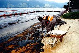 .:: Fontes de Poluição da Água - Só Biologia ::.