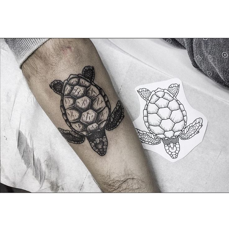 Little turtle for philippe appointments for Little turtle tattoo