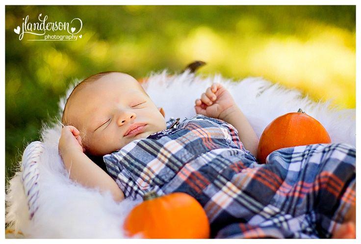 #newbornoutdoors Newborn Pumpkin Mini Sessions  Fall Mini Session  Pumpkin Stand Glendale Arizona Family Photographer  JLAnderson Photography #pumpkinminisession