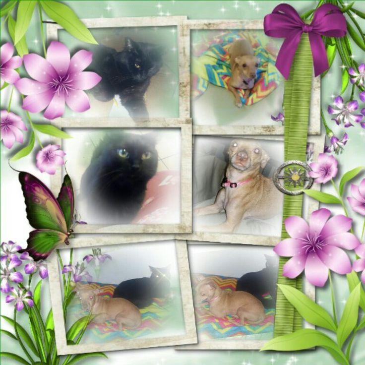 Mejores 72 imágenes de Imikimi.com photo frames en Pinterest   Marco ...