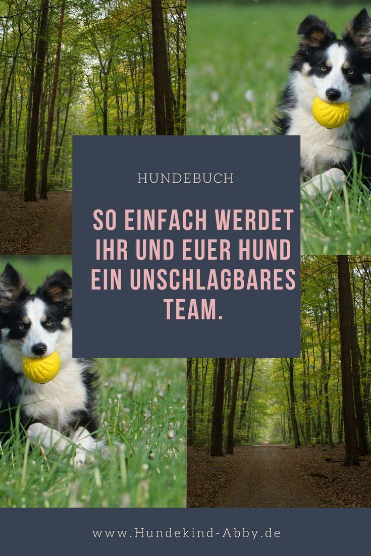 #Hundesport #Beschäftigung #Hund #Hundeblogger #Hundeliebe #Wissen