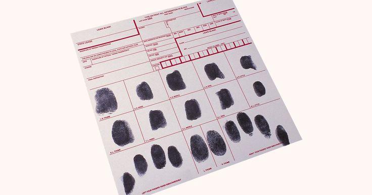Cuando se toman las huellas dactilares, existe una técnica específica que se debe utilizar para asegurarse que las copias sean legibles. Las huellas dactilares aceptables son en ...