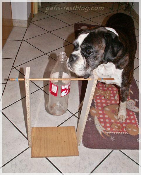 Hundeintelligenzspielzeug bauen!