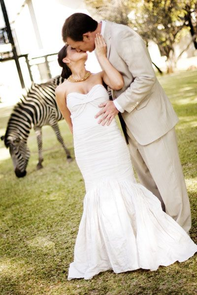 Omg i need to do this!!! Check out the zebra! Unique Wedding Ideas - Unique Weddings   Wedding Planning, Ideas & Etiquette   Bridal Guide Magazine