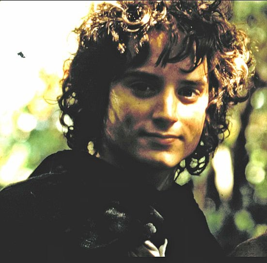 Frodo Baggins♥♥♥♥♥ Best Picture Ever!