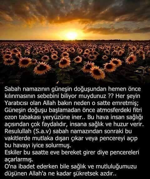 """1,205 Beğenme, 22 Yorum - Instagram'da Recep Tayyip Erdoğan  (@tayyipciler1453): """"Hiç bir şey sebepsiz yere değildir  @buck_hele"""""""