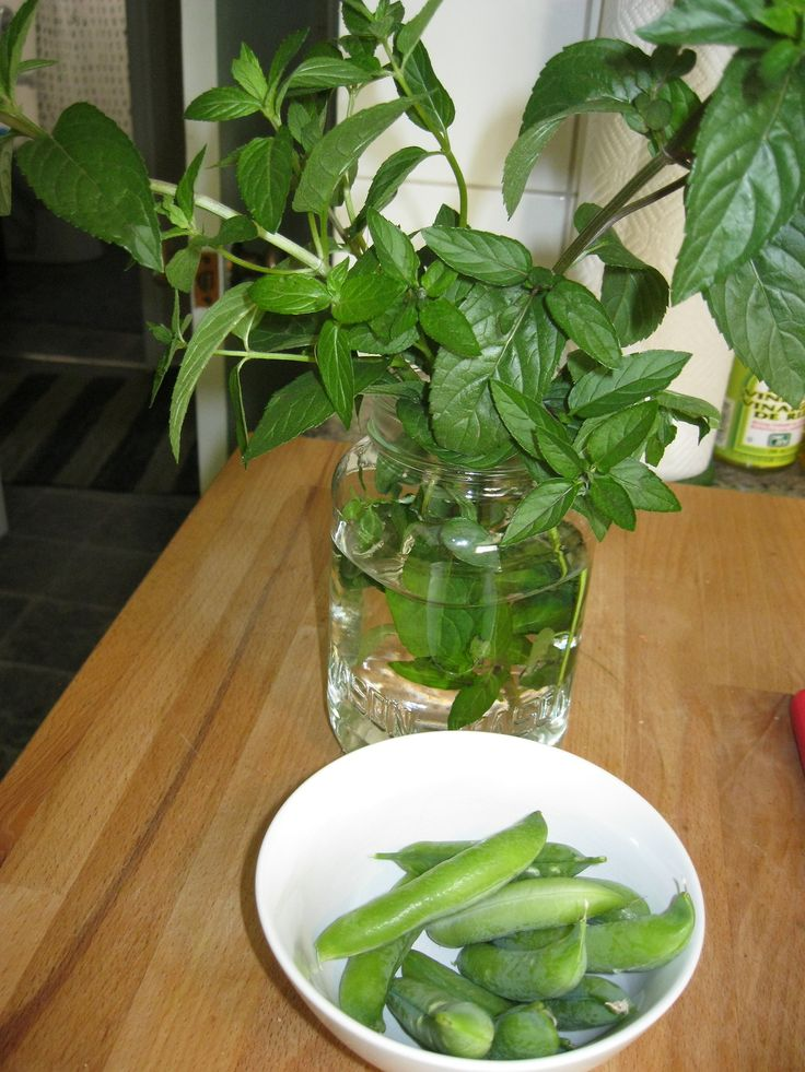 Peas and mint.