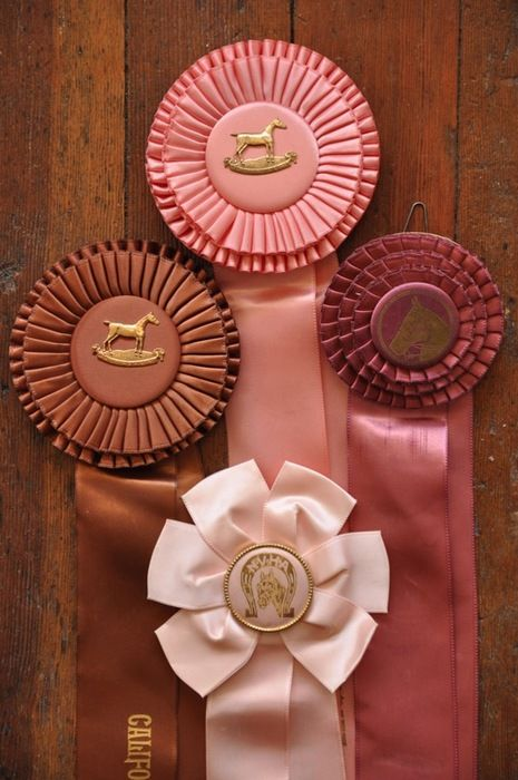 Buy Trophies and Medals, Award Prize Rosettes, Winning Sashes and Ribbons. Leading supplier of Show Sundries and Engraved Trophies.