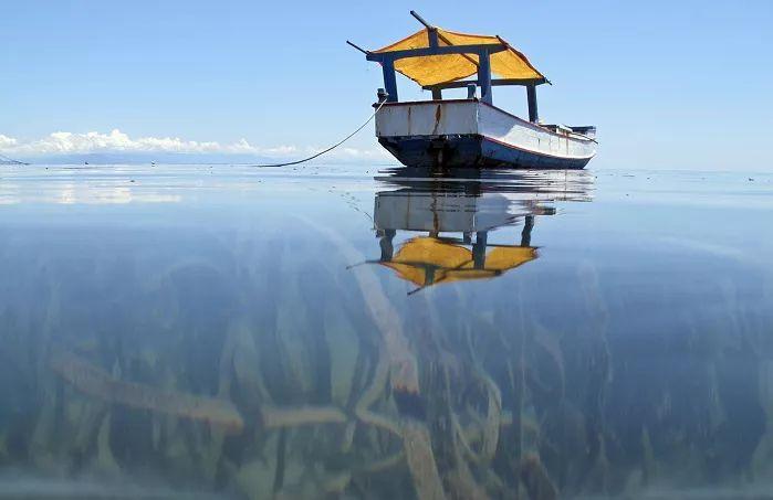 Objetivo 14: Vida marina   UNDP